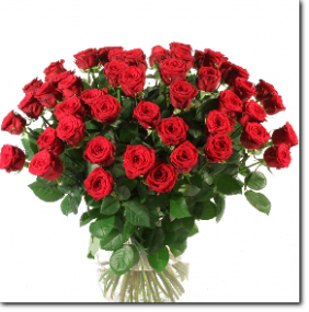 Цветы оптом цены